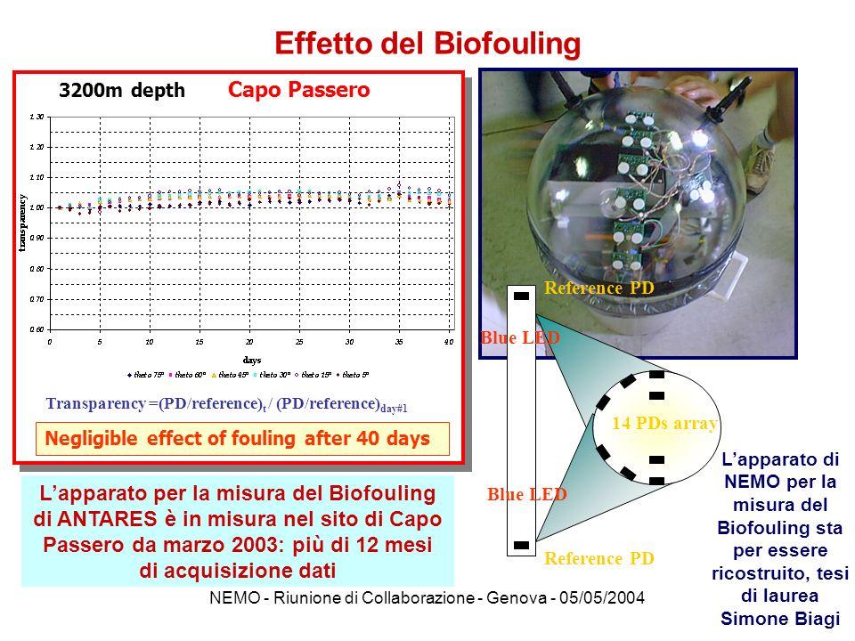 Effetto del Biofouling