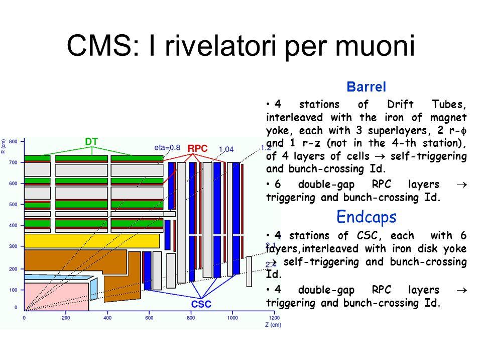 CMS: I rivelatori per muoni