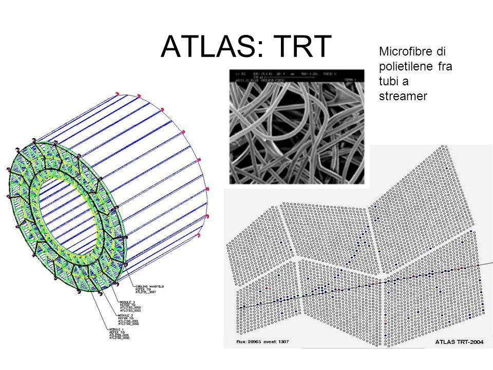 ATLAS: TRT Microfibre di polietilene fra tubi a streamer
