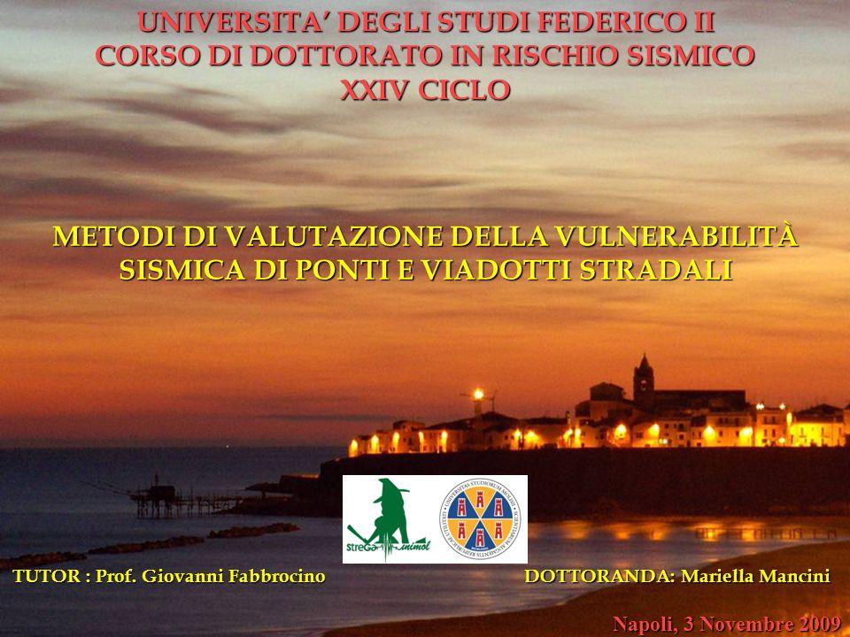 UNIVERSITA' DEGLI STUDI FEDERICO II