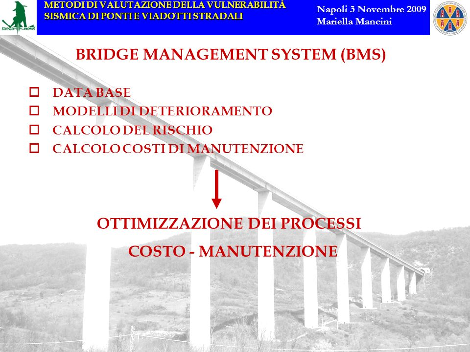 BRIDGE MANAGEMENT SYSTEM (BMS)