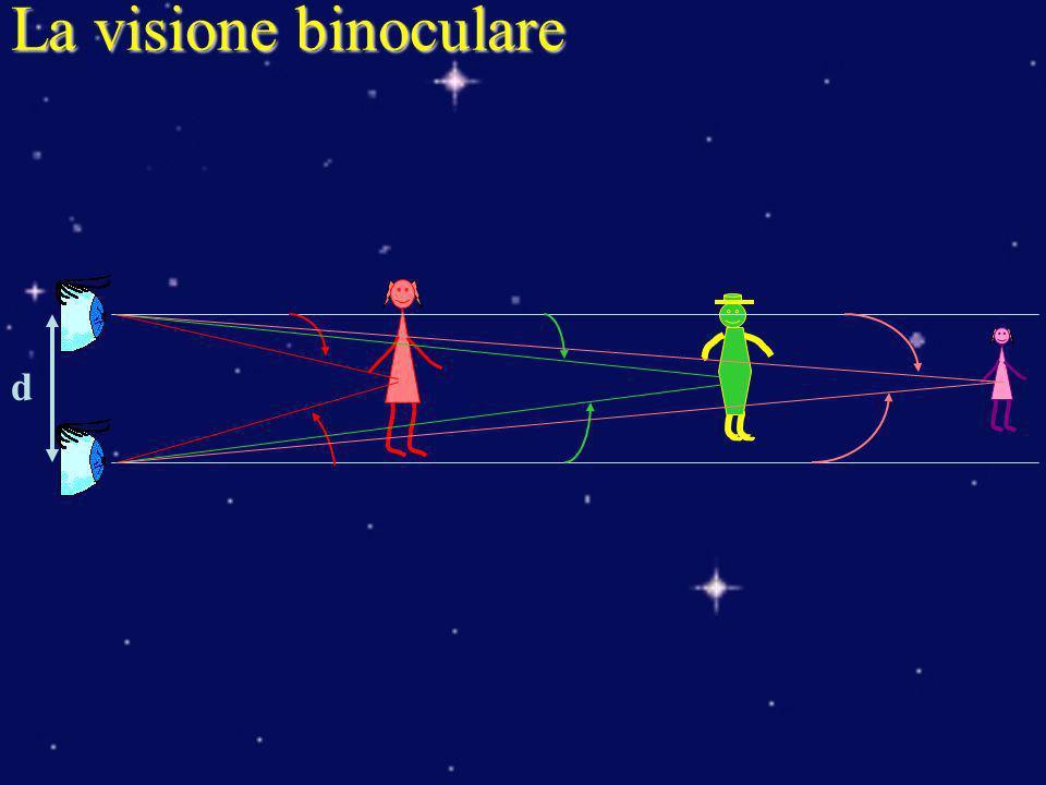La visione binoculare d
