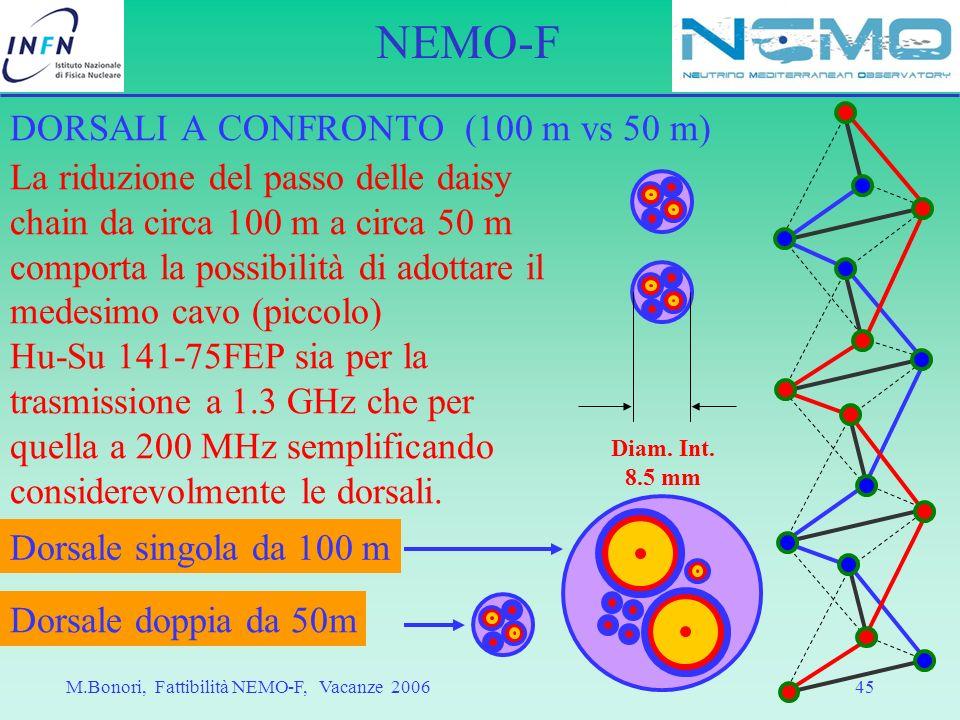 DORSALI A CONFRONTO (100 m vs 50 m)
