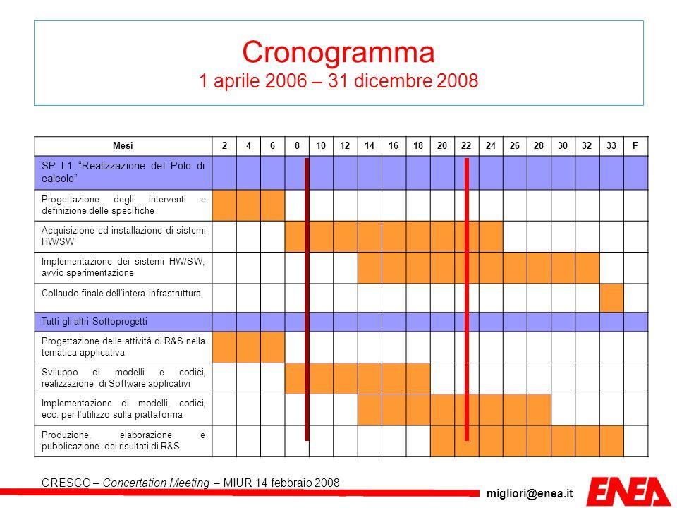 Cronogramma 1 aprile 2006 – 31 dicembre 2008