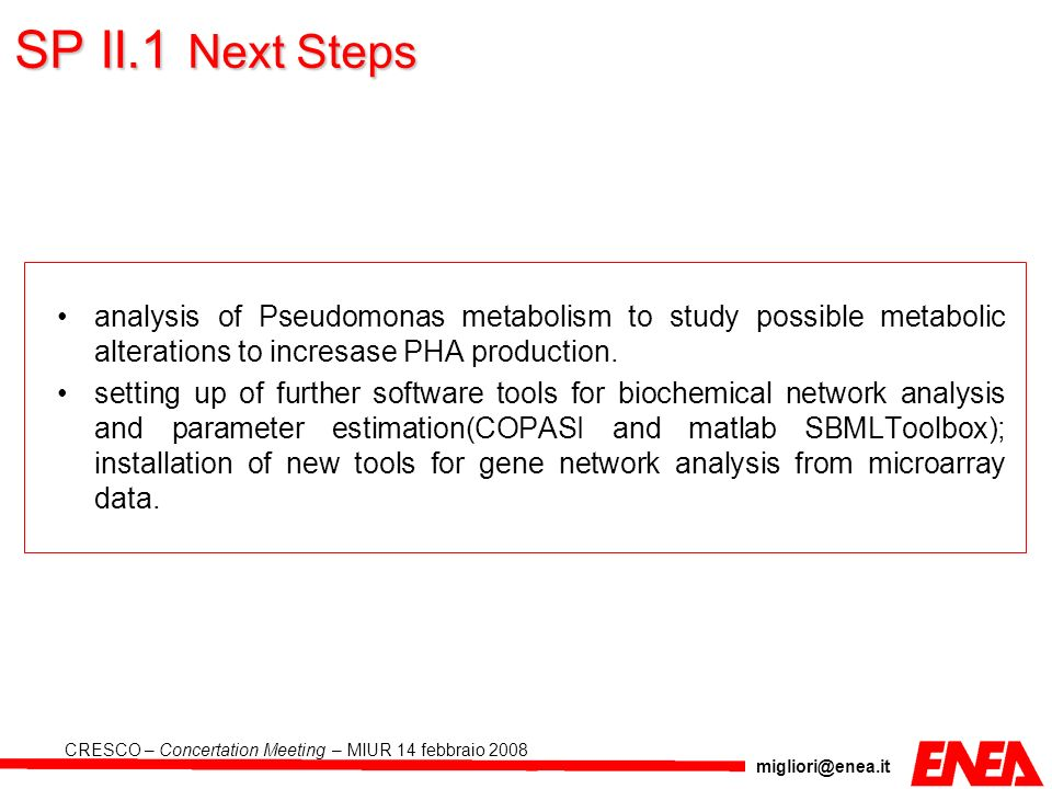 SP II.1 Next Steps analysis of Pseudomonas metabolism to study possible metabolic alterations to incresase PHA production.