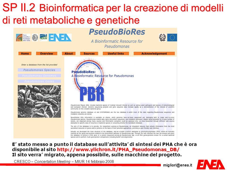 SP II.2 Bioinformatica per la creazione di modelli di reti metaboliche e genetiche