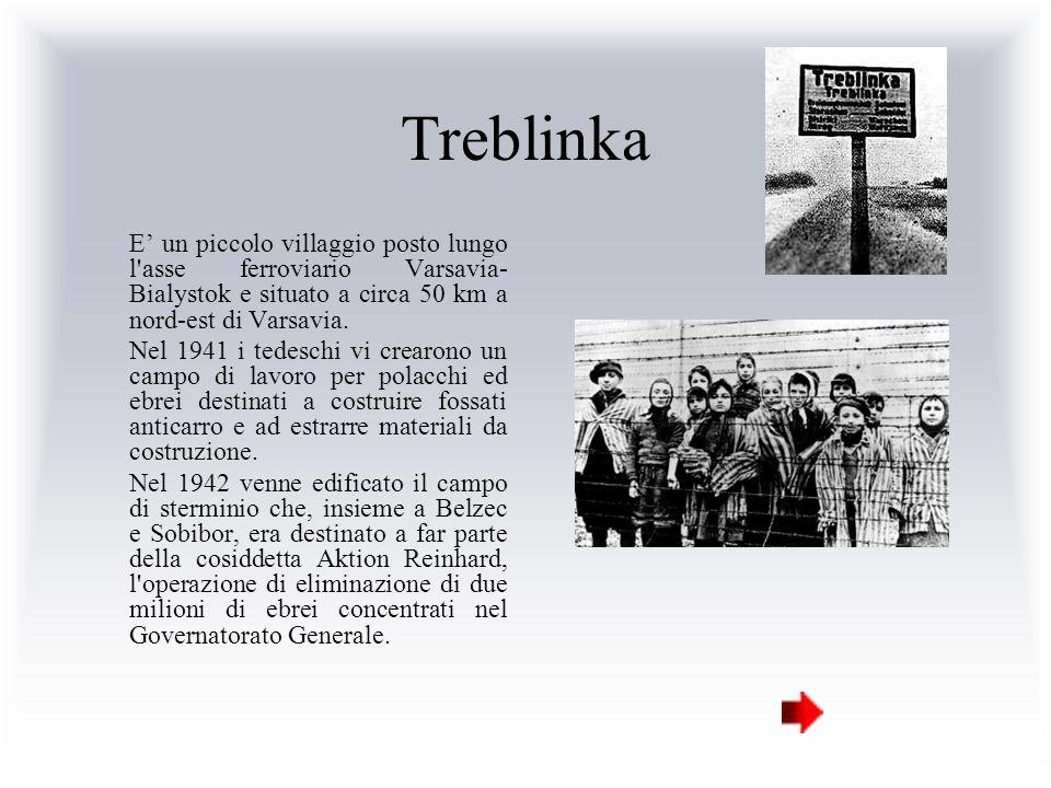 Treblinka E' un piccolo villaggio posto lungo l asse ferroviario Varsavia-Bialystok e situato a circa 50 km a nord-est di Varsavia.