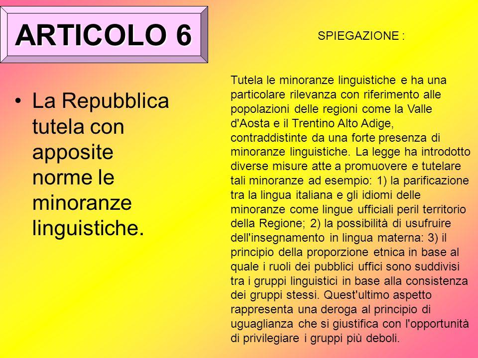 ARTICOLO 6 SPIEGAZIONE :