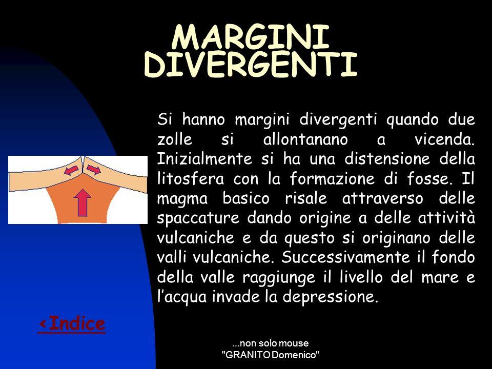 ...non solo mouse GRANITO Domenico
