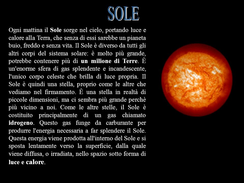 SOLE SOLE.