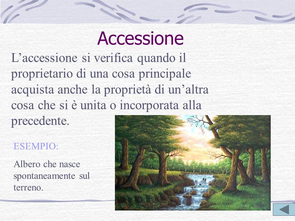Accessione