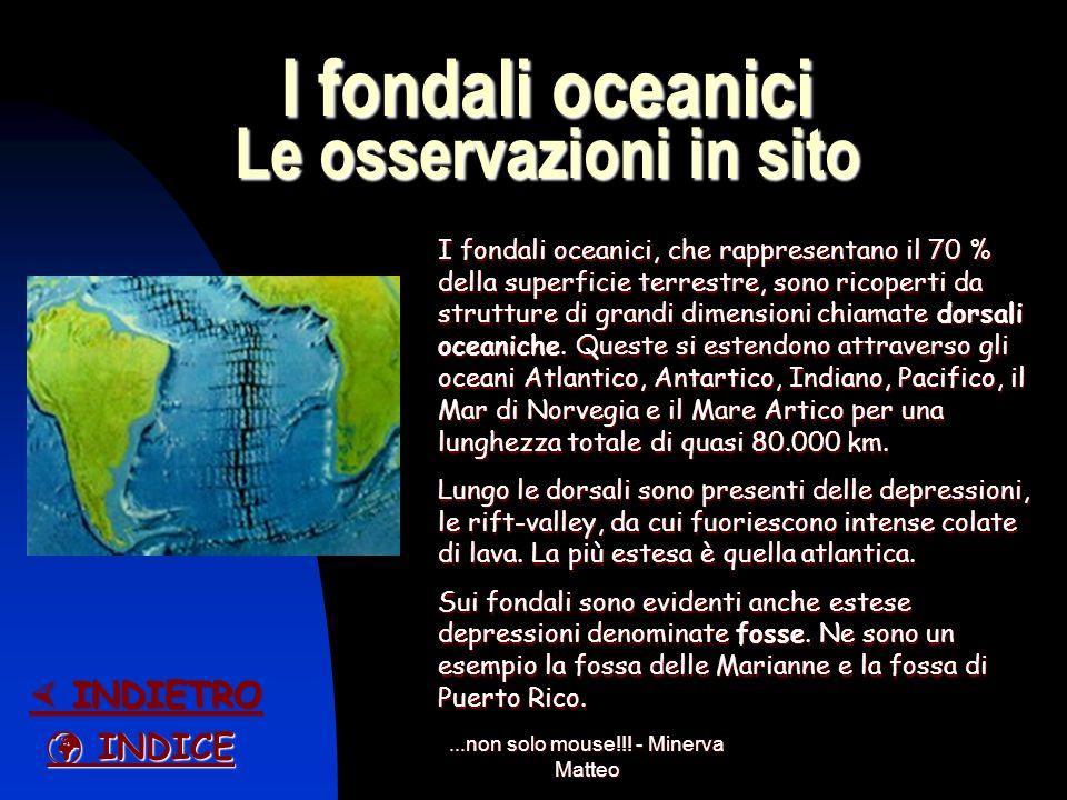I fondali oceanici Le osservazioni in sito