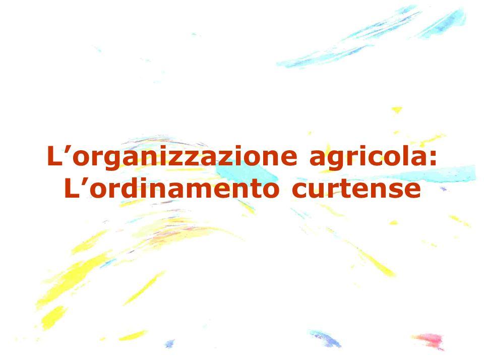L'organizzazione agricola: L'ordinamento curtense