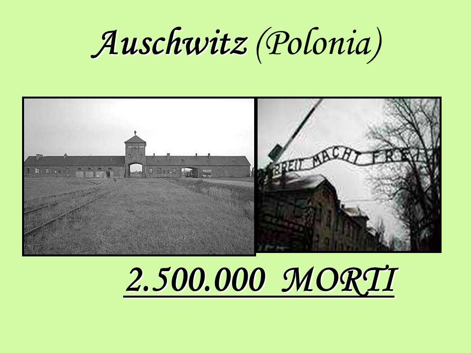Auschwitz (Polonia) 2.500.000 MORTI