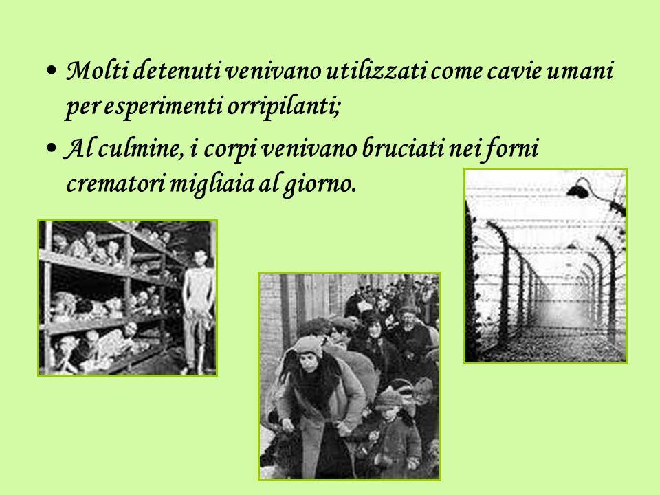 Molti detenuti venivano utilizzati come cavie umani per esperimenti orripilanti;