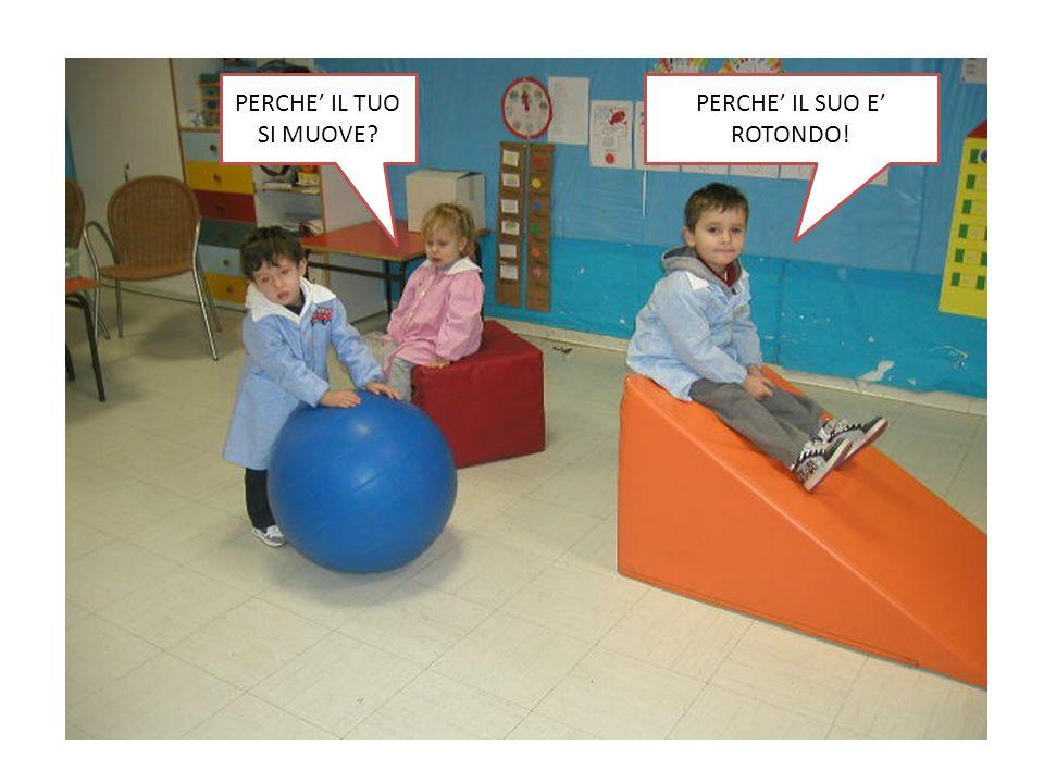 PERCHE' IL SUO E' ROTONDO!