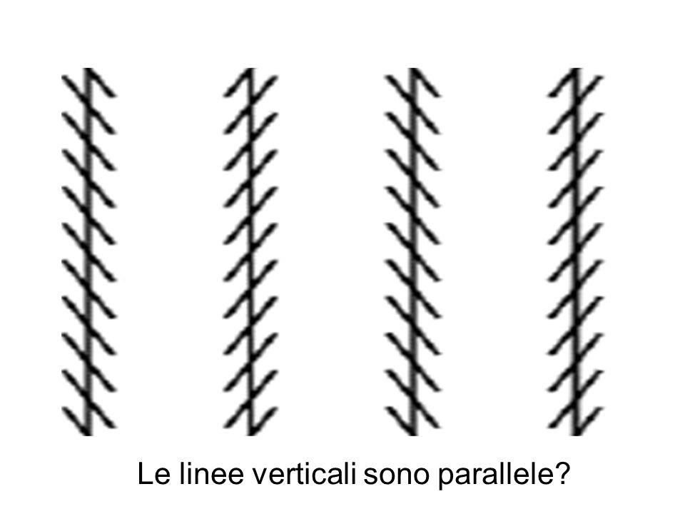 Le linee verticali sono parallele