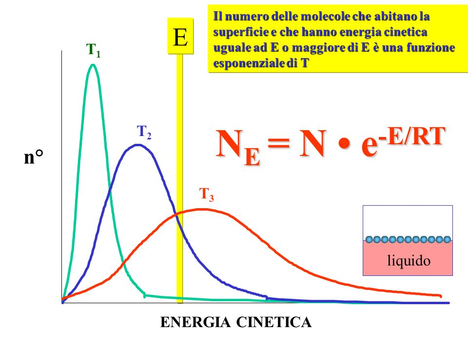 NE = N • e-E/RT E n° T1 T2 T3 liquido ENERGIA CINETICA