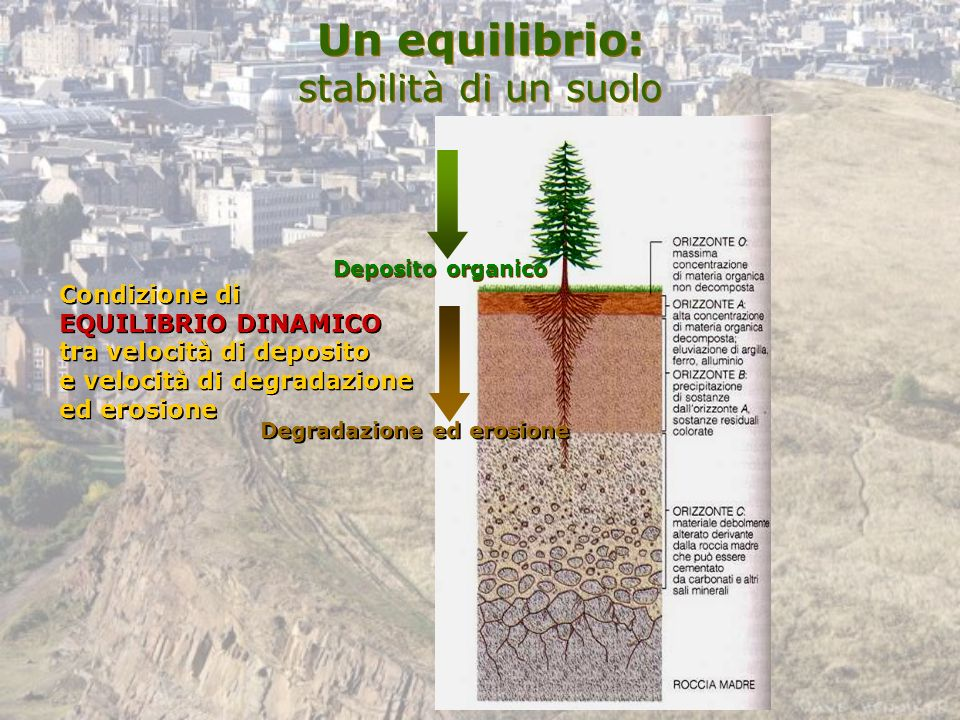 Un equilibrio: stabilità di un suolo