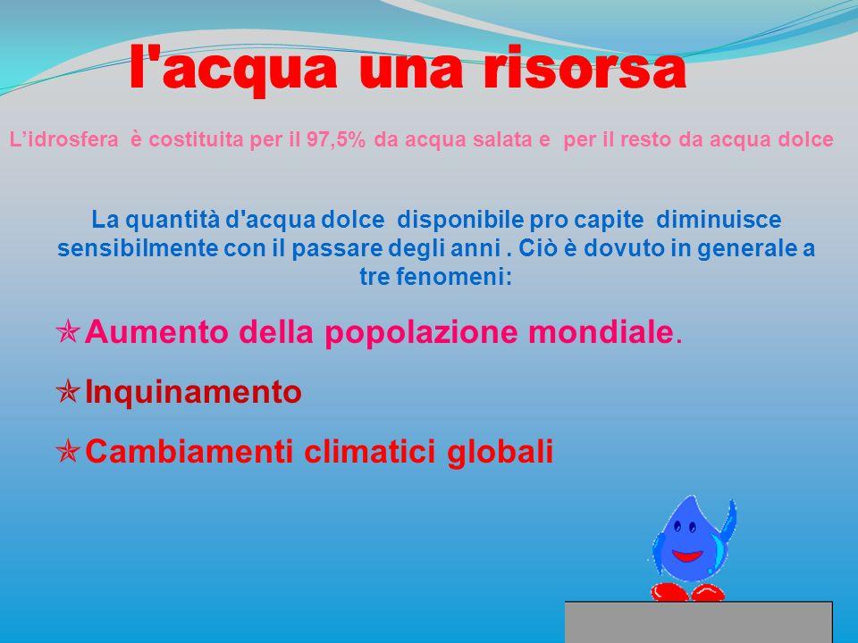Aumento della popolazione mondiale. Inquinamento