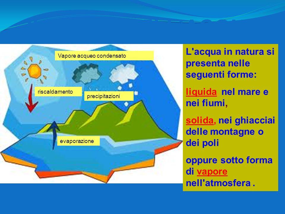 IL CICLO DELL'ACQUA L acqua in natura si presenta nelle seguenti forme: liquida, nel mare e nei fiumi,