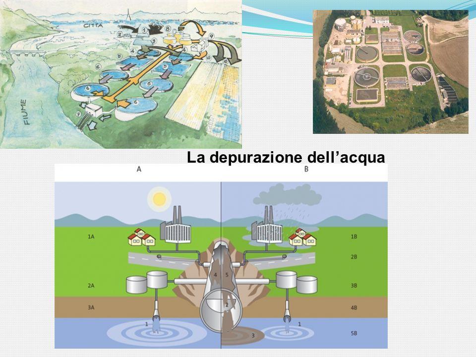 La depurazione dell'acqua