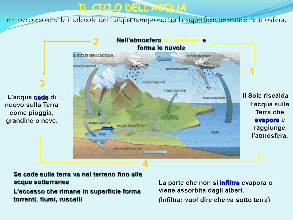 IL CICLO DELL'ACQUA è il percorso che le molecole dell' acqua compiono tra la superficie terreste e l'atmosfera.