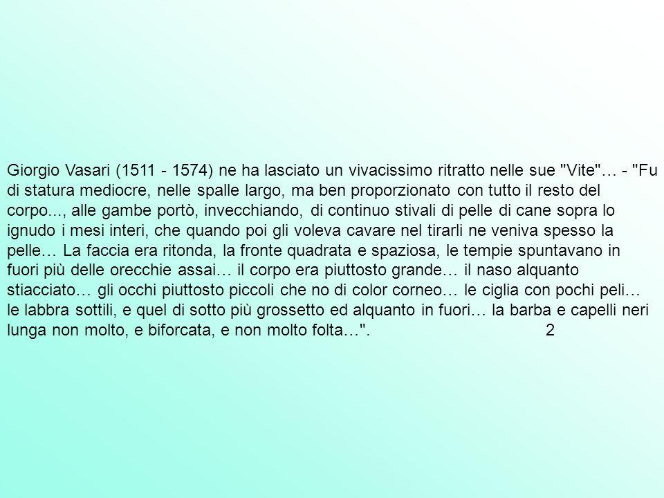 Giorgio Vasari (1511 - 1574) ne ha lasciato un vivacissimo ritratto nelle sue Vite … - Fu di statura mediocre, nelle spalle largo, ma ben proporzionato con tutto il resto del corpo..., alle gambe portò, invecchiando, di continuo stivali di pelle di cane sopra lo ignudo i mesi interi, che quando poi gli voleva cavare nel tirarli ne veniva spesso la pelle… La faccia era ritonda, la fronte quadrata e spaziosa, le tempie spuntavano in fuori più delle orecchie assai… il corpo era piuttosto grande… il naso alquanto stiacciato… gli occhi piuttosto piccoli che no di color corneo… le ciglia con pochi peli… le labbra sottili, e quel di sotto più grossetto ed alquanto in fuori… la barba e capelli neri lunga non molto, e biforcata, e non molto folta… .