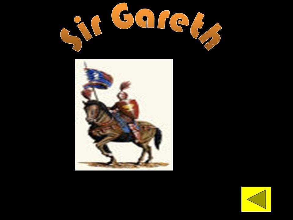 Sir Gareth