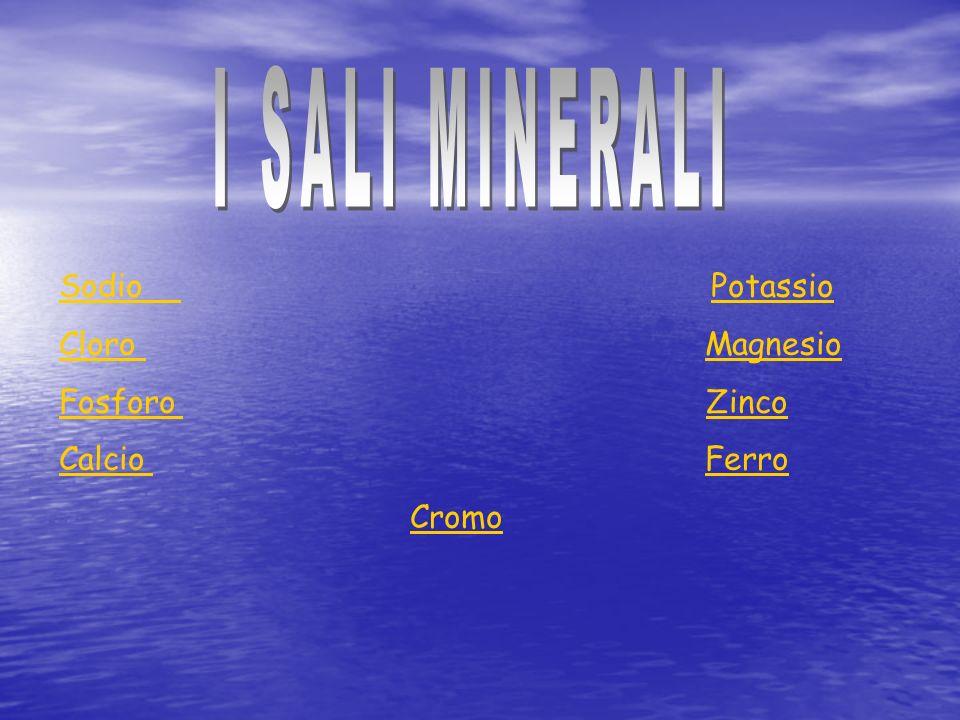 I SALI MINERALI Sodio Potassio Cloro Magnesio Fosforo Zinco