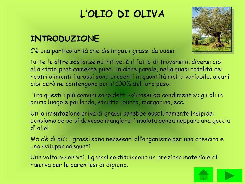 L'OLIO DI OLIVA INTRODUZIONE