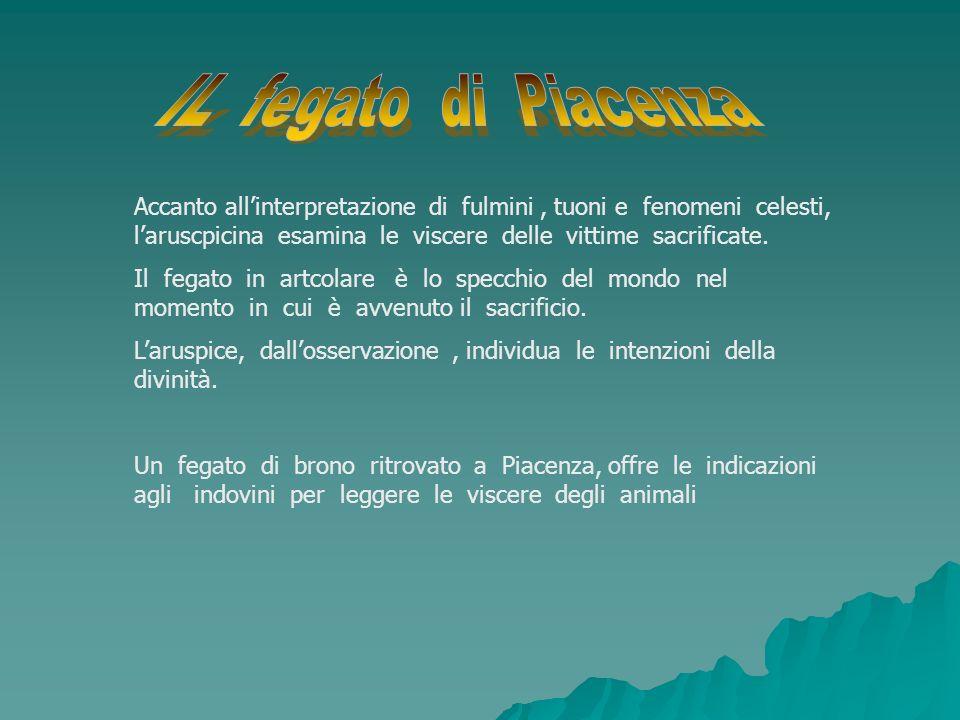 IL fegato di Piacenza