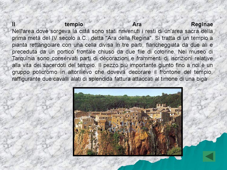 Il tempio Ara Reginae Nell area dove sorgeva la città sono stati rinvenuti i resti di un area sacra della prima metà del IV secolo a.C., detta Ara della Regina .