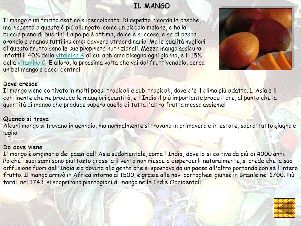 IL MANGOIl mango è un frutto esotico supercolorato. Di aspetto ricorda le pesche,