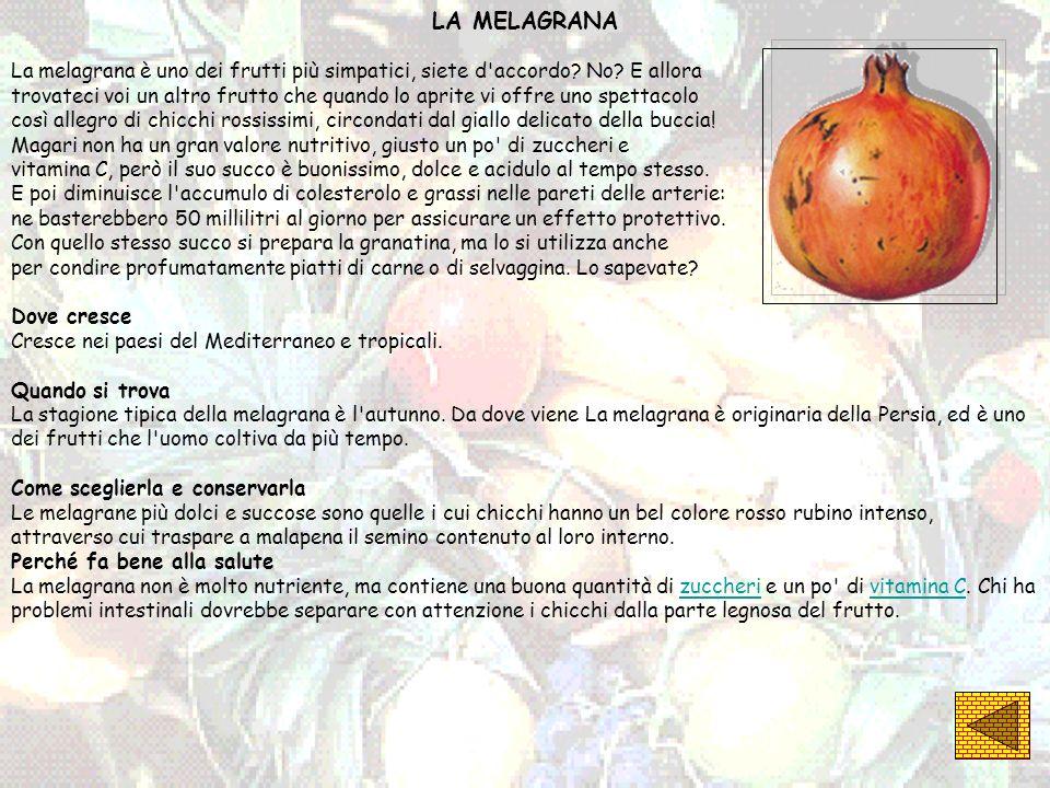 LA MELAGRANA La melagrana è uno dei frutti più simpatici, siete d accordo No E allora.
