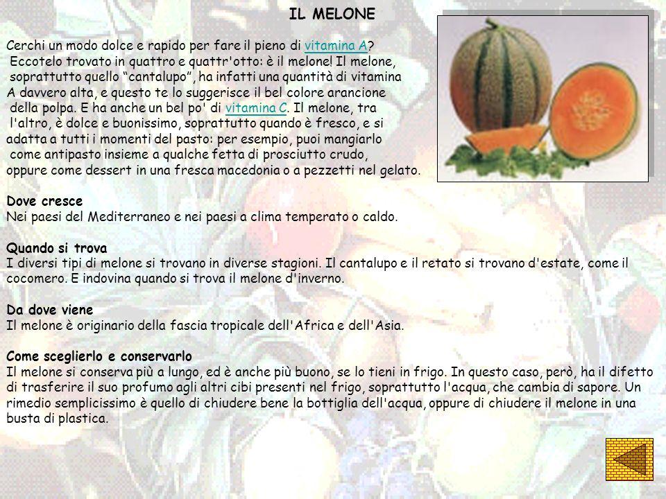 IL MELONE Cerchi un modo dolce e rapido per fare il pieno di vitamina A Eccotelo trovato in quattro e quattr otto: è il melone! Il melone,