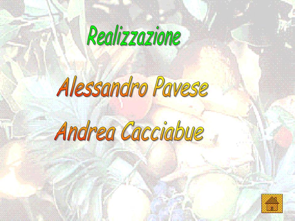Realizzazione Alessandro Pavese Andrea Cacciabue