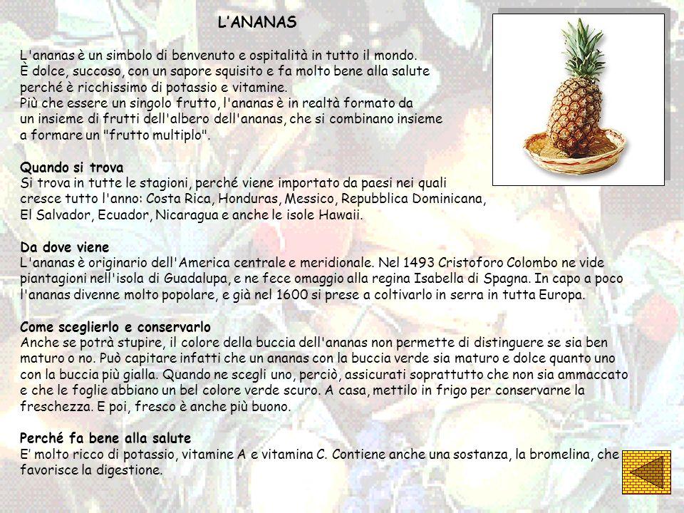 L'ANANAS L ananas è un simbolo di benvenuto e ospitalità in tutto il mondo.