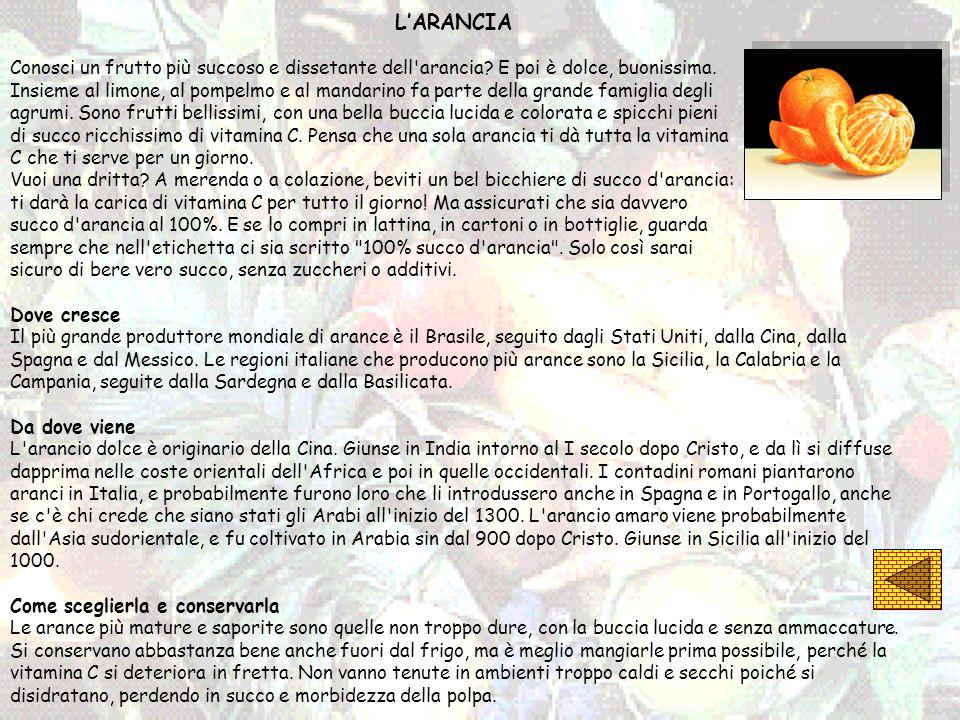 L'ARANCIA Conosci un frutto più succoso e dissetante dell arancia E poi è dolce, buonissima.