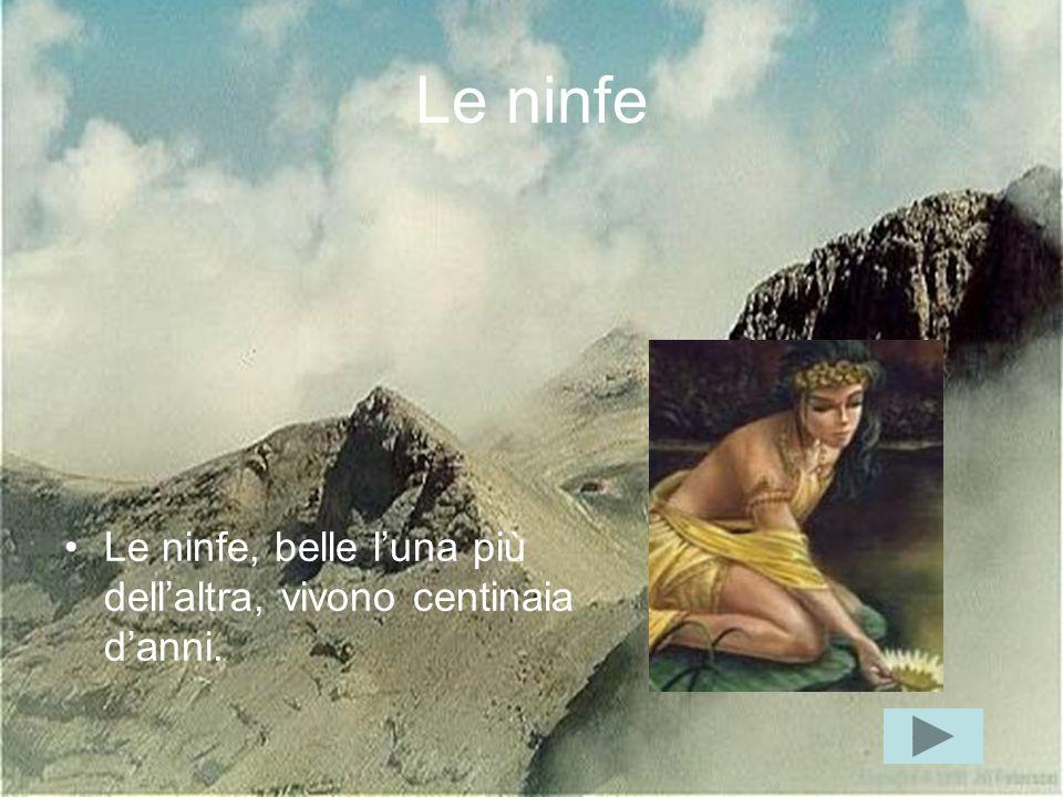 Le ninfe Le ninfe, belle l'una più dell'altra, vivono centinaia d'anni.