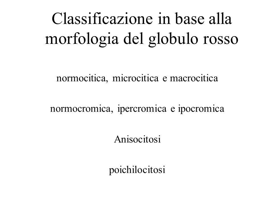 Classificazione in base alla morfologia del globulo rosso