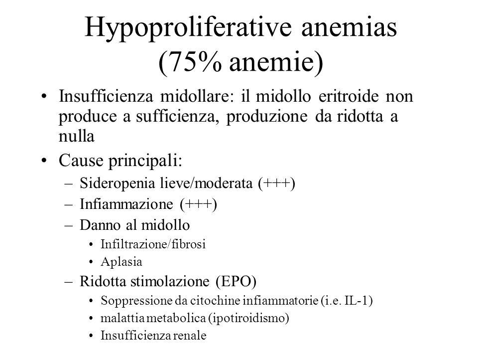 Hypoproliferative anemias (75% anemie)
