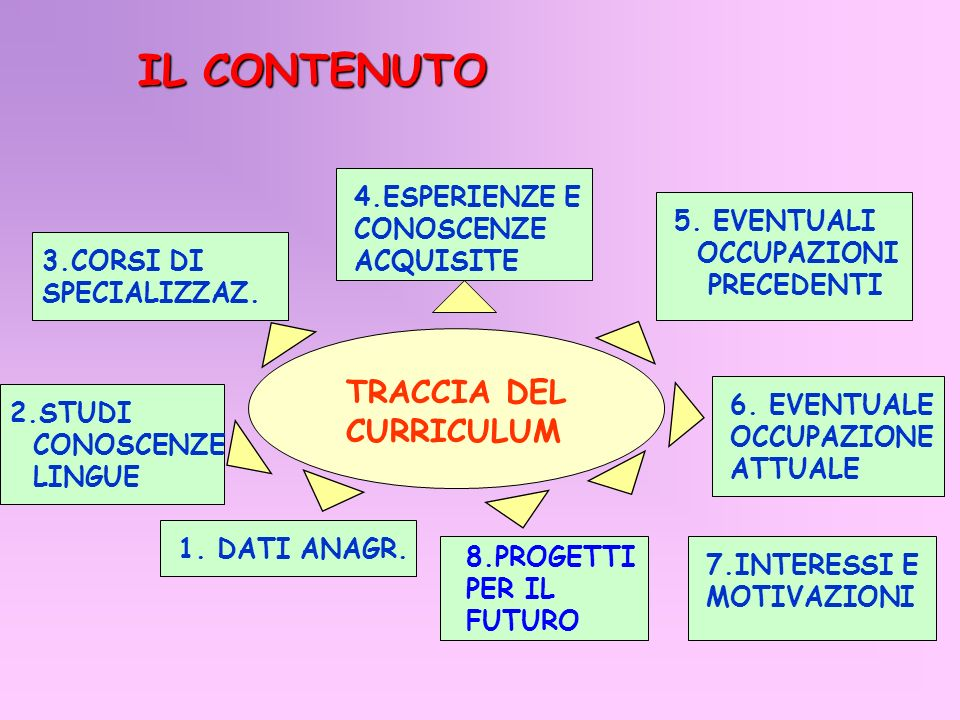IL CONTENUTO TRACCIA DEL CURRICULUM 4.ESPERIENZE E