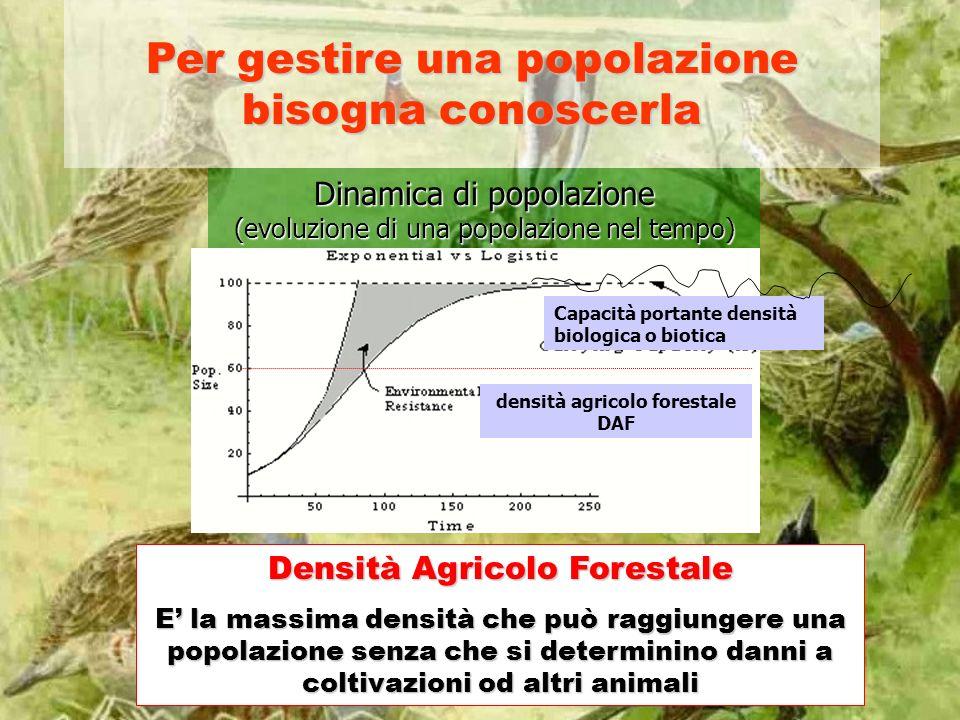 densità agricolo forestale DAF