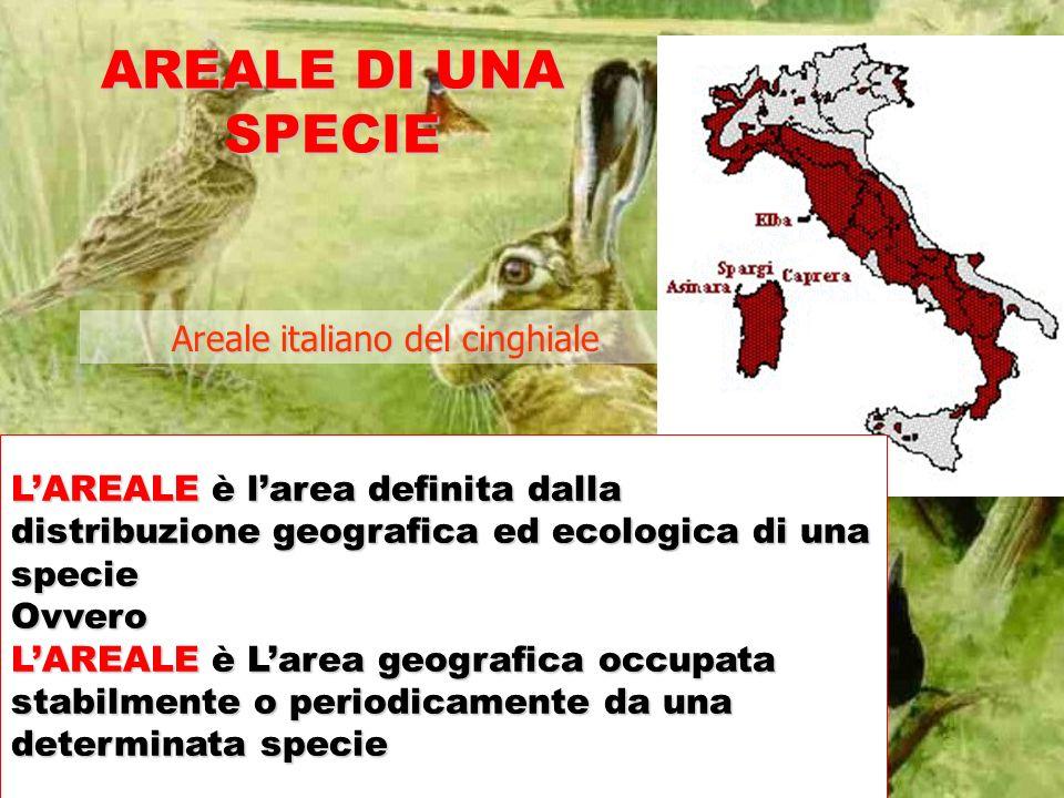 Areale italiano del cinghiale