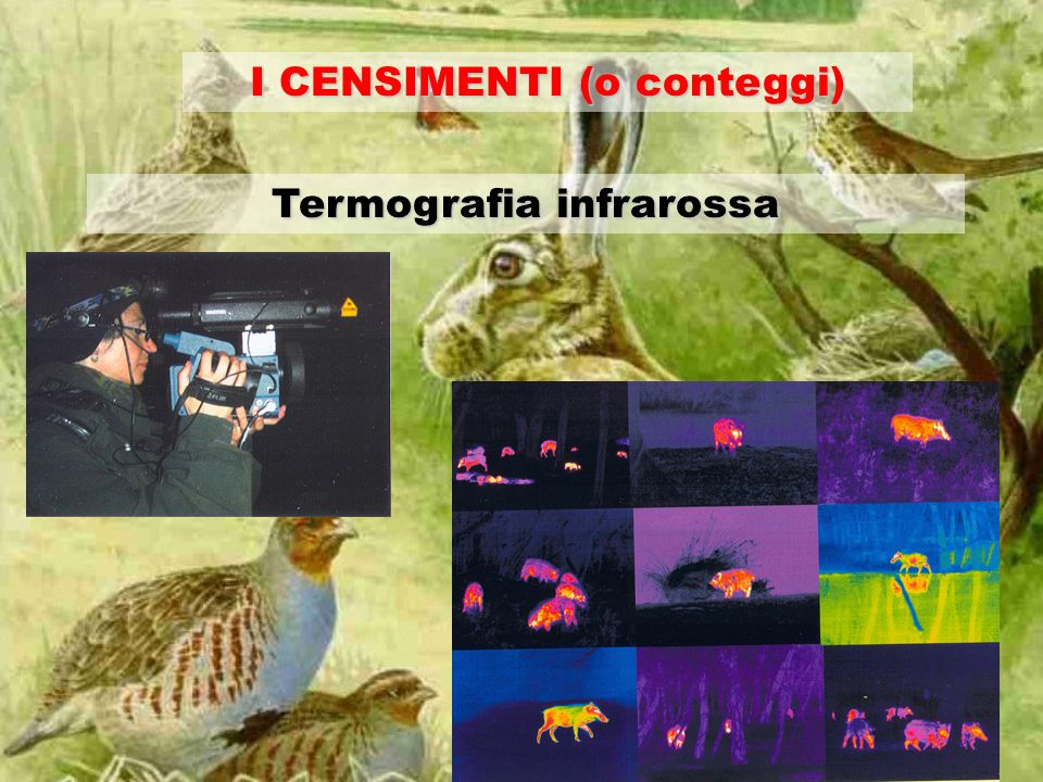 I CENSIMENTI (o conteggi) Termografia infrarossa