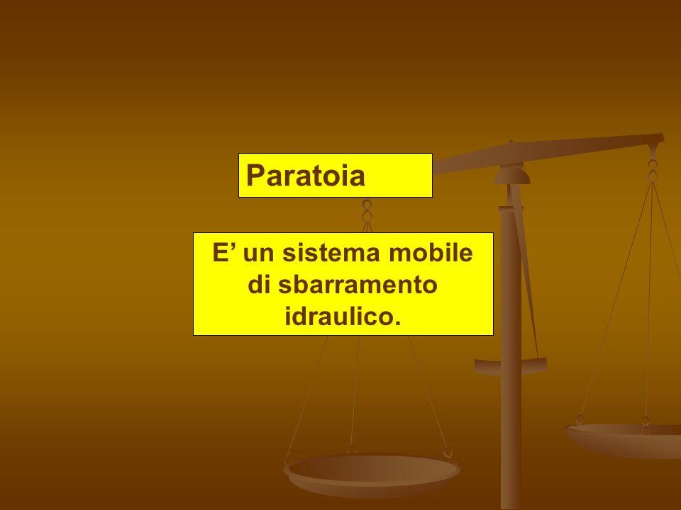 E' un sistema mobile di sbarramento idraulico.