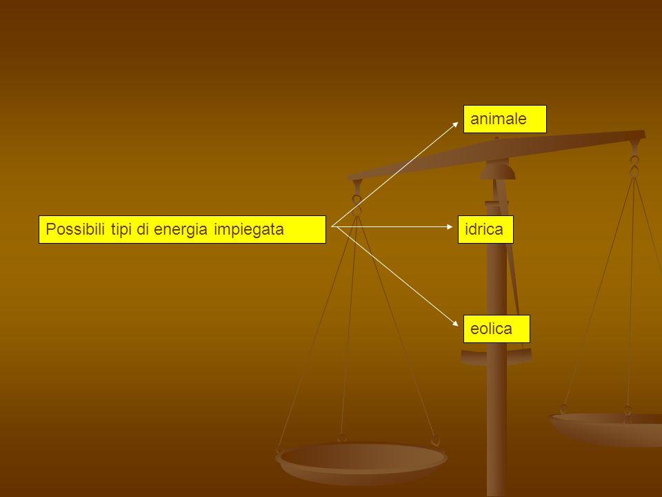 animale Possibili tipi di energia impiegata idrica eolica