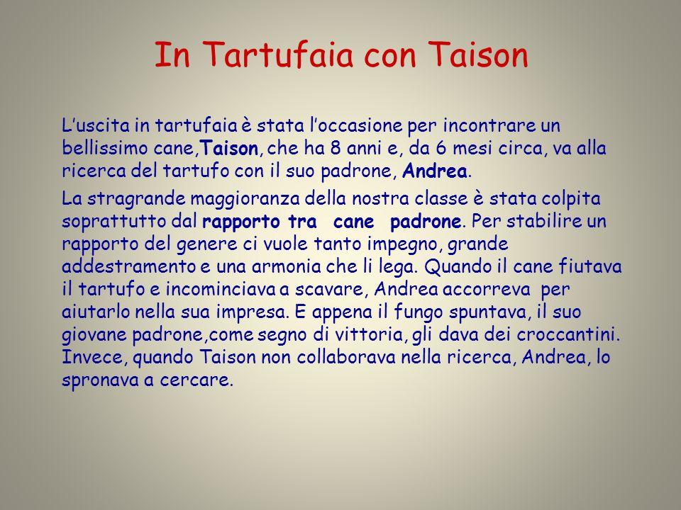 In Tartufaia con Taison