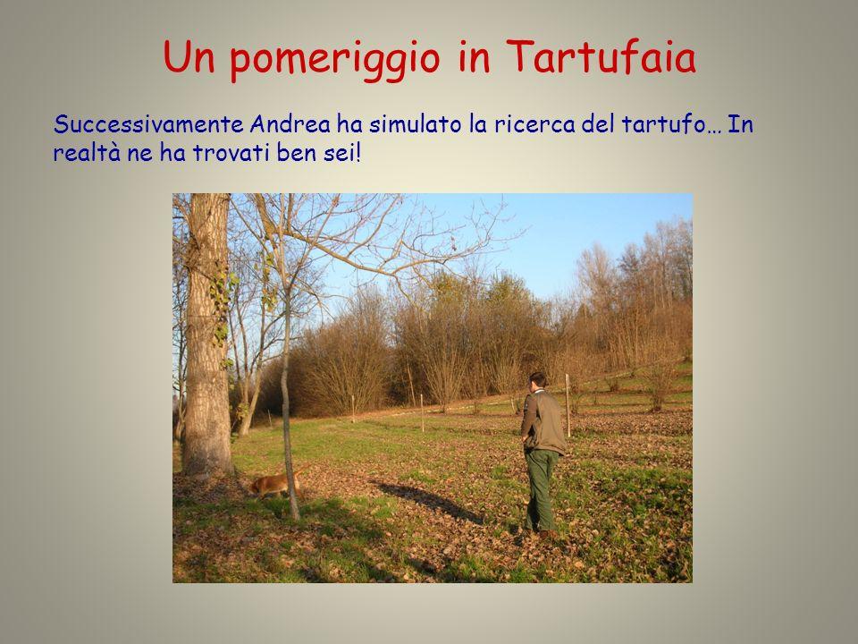 Un pomeriggio in Tartufaia